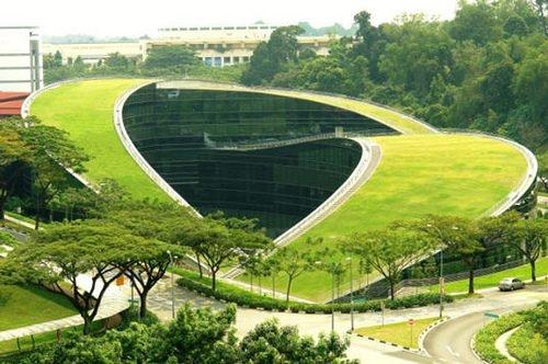 Tejados verdes, el futuro urbanístico