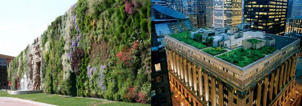 el jardin vertical mas grande del mundo 4 copia