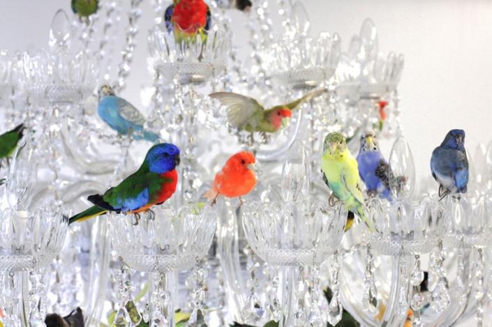 3_sebastian-errazuriz-XL-bird-chandelier-designboom-03