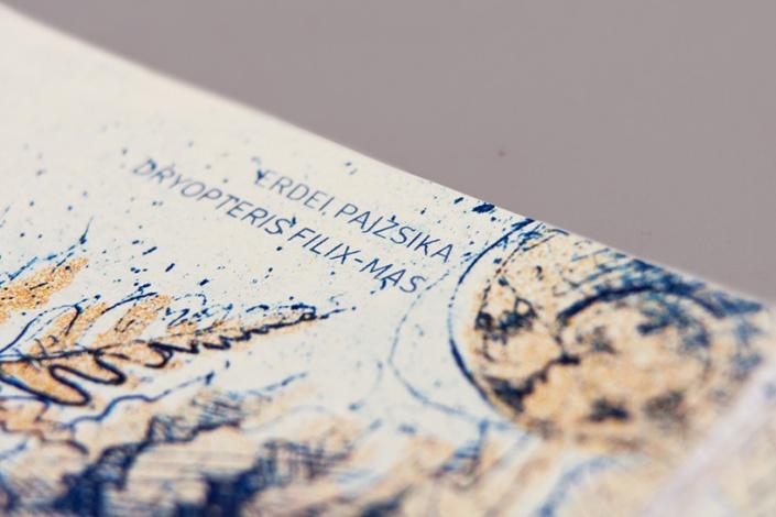 10_barbara-bernat-hungarian-paper-money-designboom-05