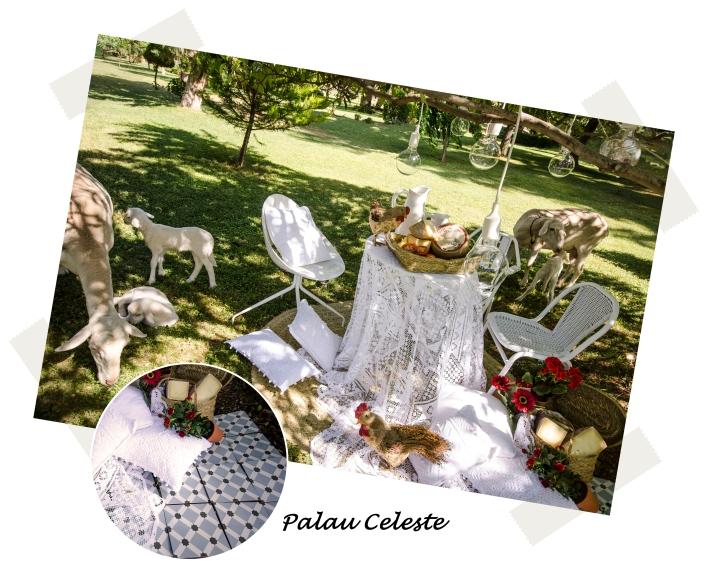 bloc picnic 1