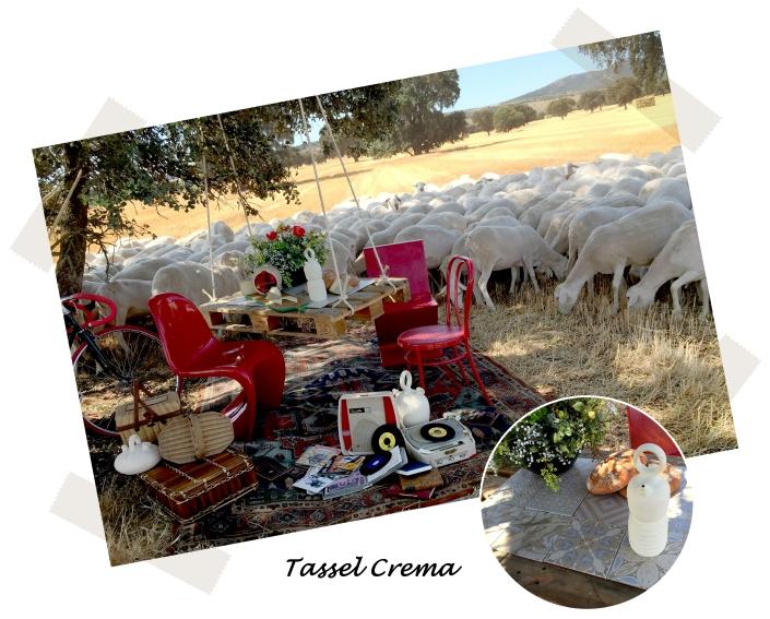 bloc picnic 4