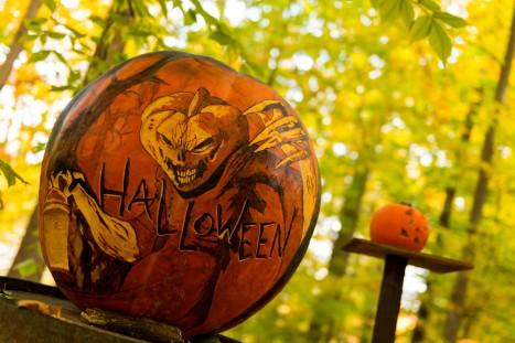 halloween-daytime-x2
