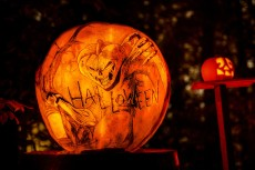 halloween-x2