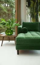 19a9eff5e281ed8cf99f88fab38dba13--green-couches-green-velvet-couch
