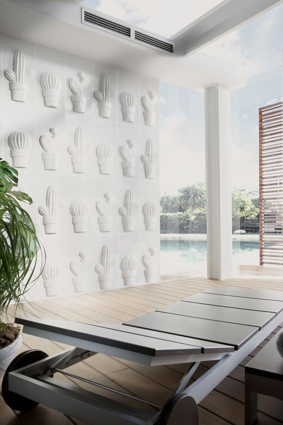 blanco-brillo-cactus