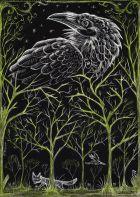 02314654b92ca5e56f8b132dde95d6d6--crow-art-raven-art