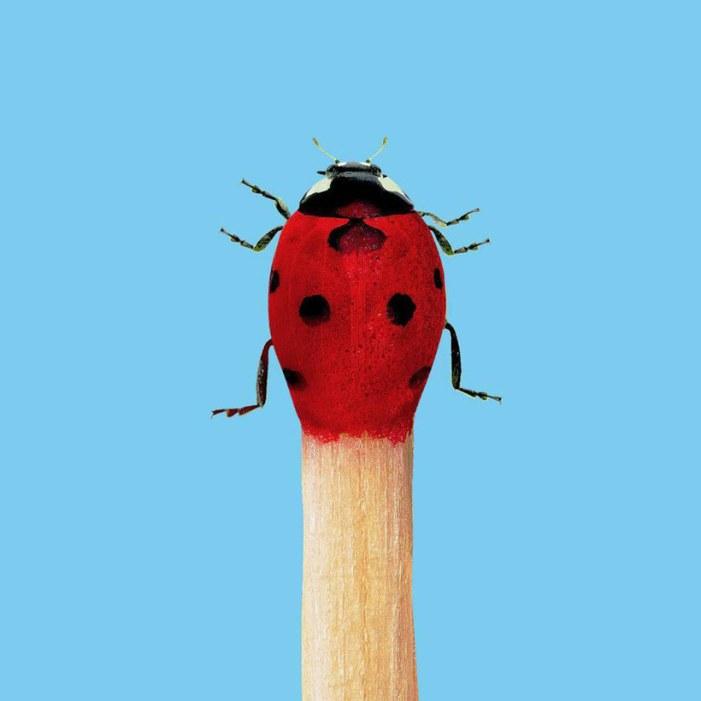 09.randy-lewis-fotografias-surrealistas-big