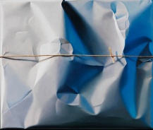 Packed_and_Stringed_grey_Powder_Fields_2011_85x100cm