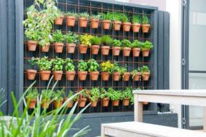 verticales_un_jardin_con_beneficios_1