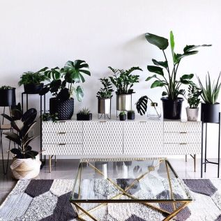 10_greenery-house-interior-trend-2019