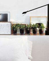 10_helechos-plantas-pequeñas-macetas-ideas-decoracion-verde-tendencias-interiores