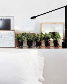 10_helechos-plantas-pequeñas-macetas-ideas-decoracion-verde-tendencias-interiores